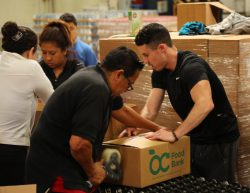 Employees Rolando and Micah work together to box food.